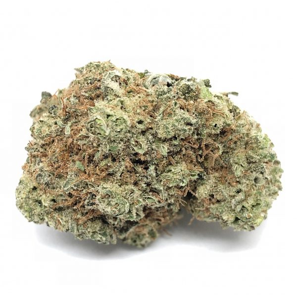 Blackberry Strain - Buy Blackberry strain online